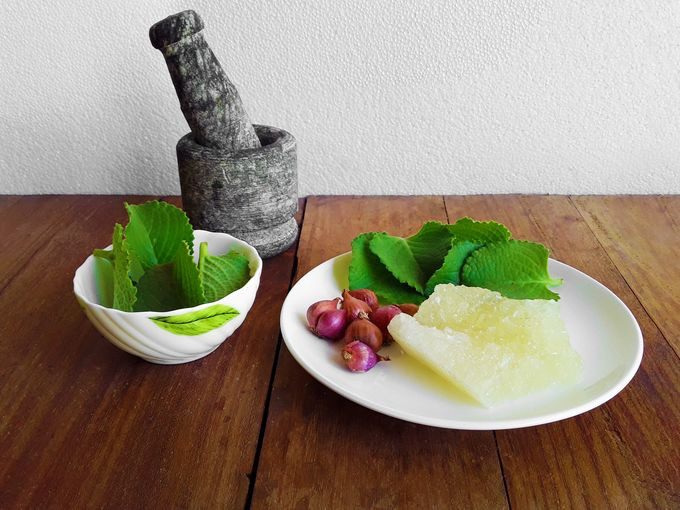 Ingredients for Indian Mint Cough Syrup - Indian mint leaves, shallots and rock candy